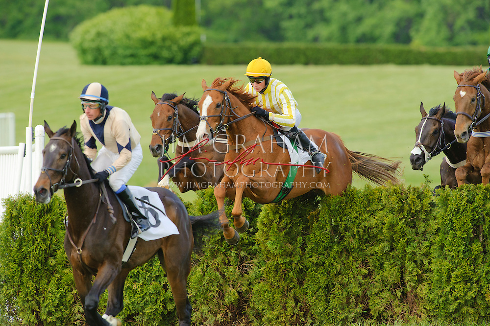 Photo by Jim Grahamat the Willowdale Steeplechase Races (PHOTOGRAPH BY JIM GRAHAM)