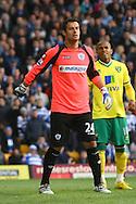 Picture by Paul Chesterton/Focus Images Ltd.  07904 640267.26/11/11.QPR's Radek ?ern? during the Barclays Premier League match at Carrow Road Stadium, Norwich.