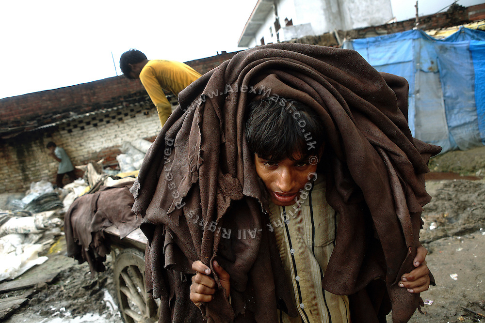 A labourer is moving a heavy load of half-processed leather destined to reach a new unit to complete another step of the production chain. In Jajmau Industrial Area, Kanupu, Uttar Pradesh, the leather passes hand in hand many times before being ready for the final product manufacturing stage. This 'outsourcing effect' creates a considerable risk for local underprivileged children to become involved in hazardous activities and subjected to lifelong exploitation.
