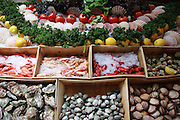 Belgium Brussels, food market Seafood on display