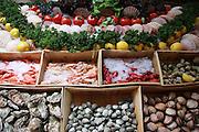 Belgium Brussels, food market Seafood on display