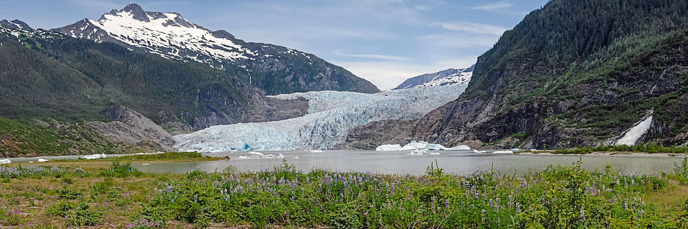 Mendenhall Glacier;  Mendenhall Valley in Tongass National Forest; 12 miles north of Juneau Alaska; flows from Juneau Icefield; Mendenhall Lake visible