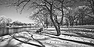 On Island Park tree branches cast long shadows on recent snow. Shadow lines lead toward the Fox River and the Herrington Inn