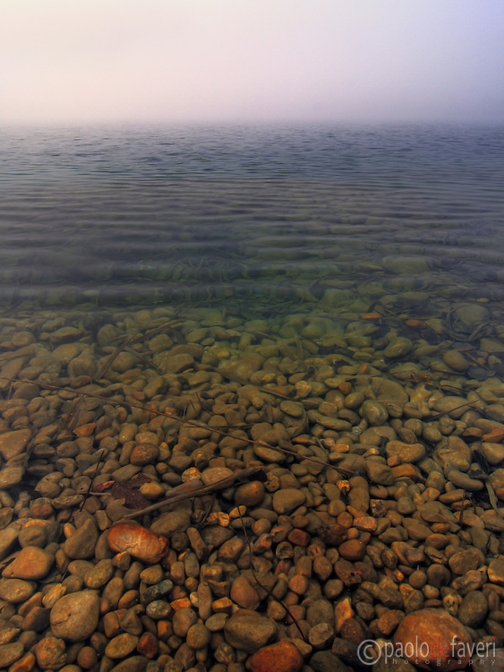 An early morning at the Po River with a thick fog all around. A layered portrait of the underwater micro-world the river normally hides. This is the Po river near to Carignano in Piedmont, Italy.