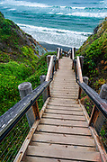 The trail to Sand Dollar Beach, Los Padres National Forest, Big Sur, California USA