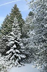 Winter parc