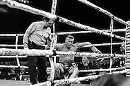Boxing: Danny Green vs Anthony Mundine in the main event at Adelaide Oval.