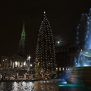 Norwegian Christmas Tree at Trafalgar Square