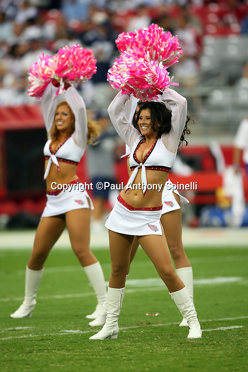 GLENDALE, AZ - OCTOBER 12: The Arizona Cardinals cheerleaders do a pregame dance routine with pink pom poms in recognition of National Breast Cancer Awareness Month during the game against the Dallas Cowboys at University of Phoenix Stadium on October 12, 2008 in Glendale, Arizona. The Cardinals defeated the Cowboys 30-24. ©Paul Anthony Spinelli