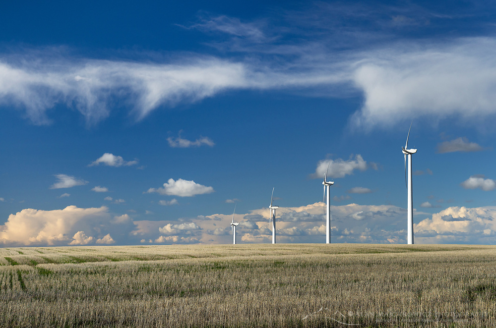 Wind Turbines in wheat fields on the Columbia Plateau, Oregon