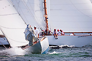 Joyant and Marilee sailing in the Opera House Cup Regatta.