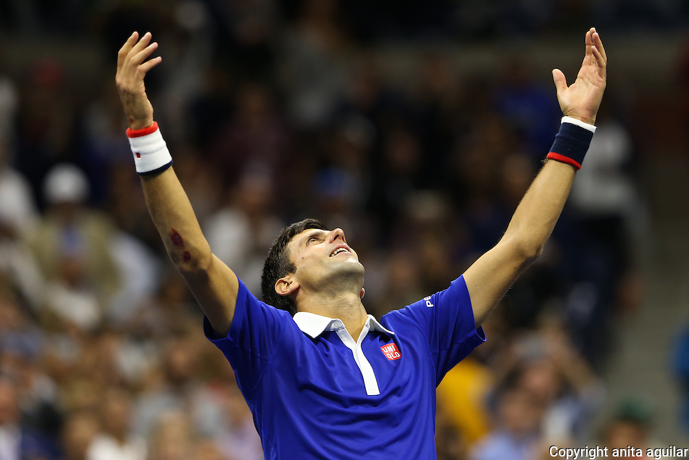 US Open 2015 Men's Final : <br />