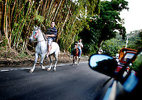 Puerto Ricans travel by horseback in the mountainous town of Jayuya, Puerto Rico, on Friday, November 14, 2008.
