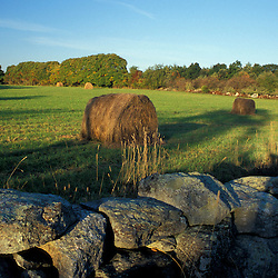 Bolton, MA.  USA.  Hay bales and a stone wall in a field on the Schartner Farm in Massachusetts' Nashoba Valley.