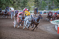 Calgary Exhibition and Stampede Chuckwagon Races