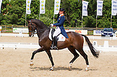Dressage at Blom
