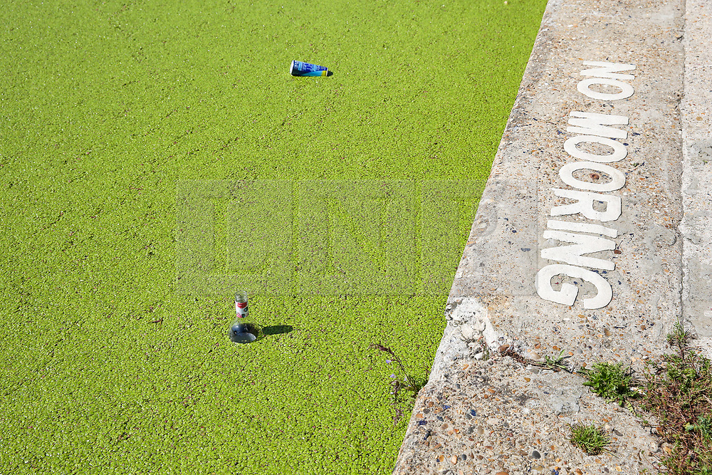 © Licensed to London News Pictures. 23/08/2019. London, UK. A bottle and a can floats on the surface of Regents Canal which is covered in Algae. According to the Met Office, the temperatures are forecast to increase to 30 degrees celsius for the bank holiday weekend.  Photo credit: Dinendra Haria/LNP