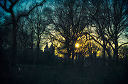 Central Park blue hour before sunset with bare trees and skyline with a cross processed textured vintage feel, New York, NY.