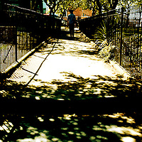 A path through a graveyard with shadows in Norwich Norfolk England