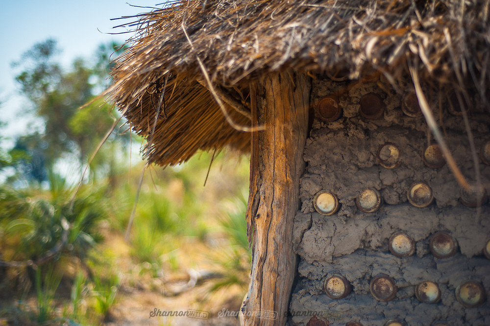 """The village of Sedibana (Saweto for """"water well"""") consists of circular homes out of the termite clay with aluminium cans stacked neatly throughout the clay for added stability and a thatched roof made of Delta reeds and hippo grass."""