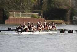 2012.02.25 Reading University Head 2012. The River Thames. Division 1. Gloucester Rowing Club IM1 8+