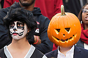 FAYETTEVILLE, AR - OCTOBER 31:  Student section of the Arkansas Razorbacks dressed up for Halloween during a game against the UT Martin Skyhawks at Razorback Stadium on October 31, 2015 in Fayetteville, Arkansas.  The Razorbacks defeated the Skyhawks 63-28.  (Photo by Wesley Hitt/Getty Images) *** Local Caption ***