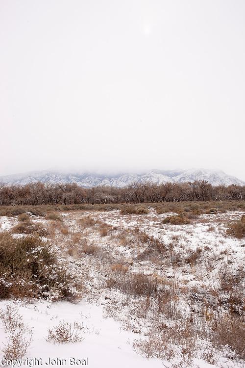 Sandia Mountains, near Bernadillo, New Mexico.