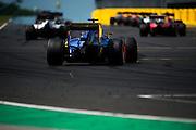 July 21-24, 2016 - Hungarian GP, Felipe Nasr (BRA), Sauber