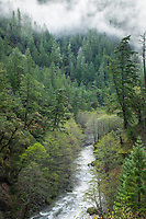 Scenic image of the Smith River in northern California.
