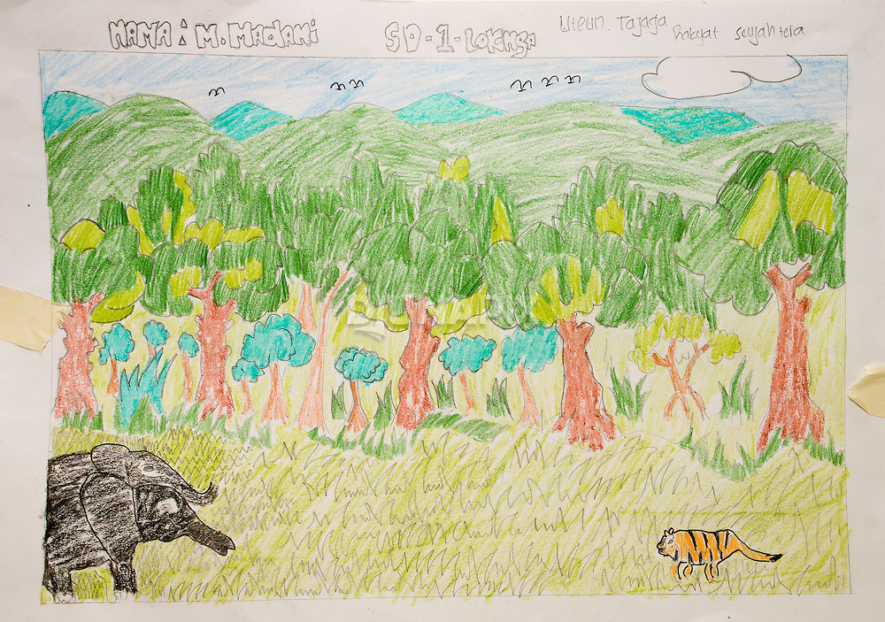 "A winning entry in a drawing contest that followed the theme of the Pride Campaign: ""When the forest is looked after, people prosper."" A Sumatran tiger and elephants are shown against an intact forest."