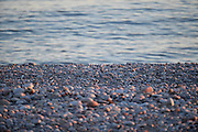 UK, January 23 2017:  View of pebbles and sea at Budleigh Salterton. Copyright 2017 Peter Horrell.