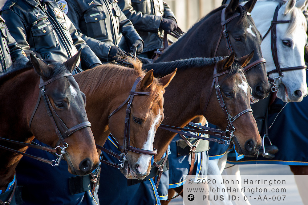 United States Park Police Mounted Unit process down the parade for the 57th Presidential Inauguration of President Barack Obama at the U.S. Capitol Building in Washington, DC January 21, 2013.