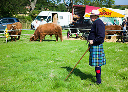 © Licensed to London News Pictures.12/08/15<br /> Danby, UK. <br /> <br /> A judge stands in the arena waiting for cattle to be led past him during an event at the 155th Danby Agricultural Show in the Esk Valley in North Yorkshire. <br /> <br /> The popular agricultural show attracts competitors and visitors from all over the surrounding area to this annual showcase of country life. <br /> <br /> Photo credit : Ian Forsyth/LNP