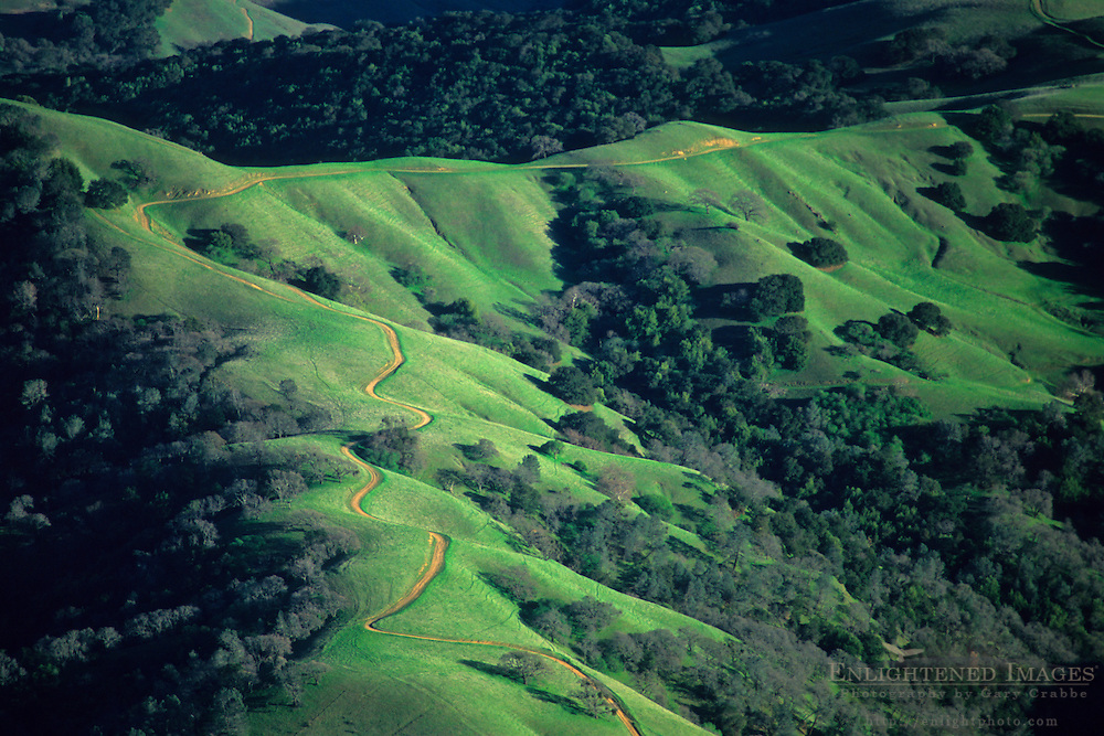 Oak covered hills in spring seen from the summit of Mount Diablo State Park, Contra Costa County, CALIFORNIA