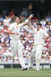 © Licensed to London News Pictures. 04/01/2014. Peter Siddle celebrates after getting a wicket during day 2 of the 5th Ashes Test Match between Australia Vs England at the SCG on 4 January, 2013 in Melbourne, Australia. Photo credit : Asanka Brendon Ratnayake/LNP