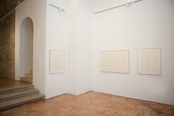 Jean Auguste Dominique Ingres and Ellsworth Kelly exhibition at Villa Medici in Rome