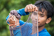 A Cambodian man readys his net as he fishes for the morning outside Battambang, Cambodia.