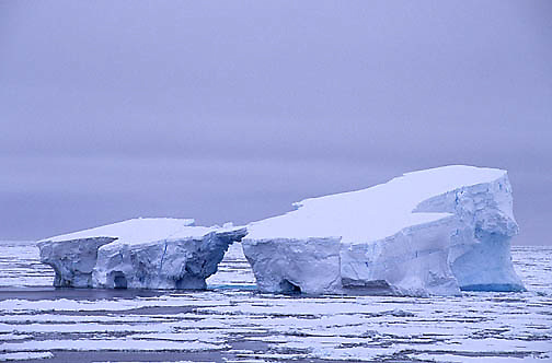 Antarctica, Icebergs in Weddell Sea among broken pack ice.
