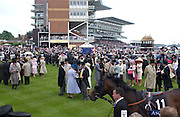 Paddock. Royal Ascot Race meeting Ascot at York. Wednesday, 15 June 2005. ONE TIME USE ONLY - DO NOT ARCHIVE  © Copyright Photograph by Dafydd Jones 66 Stockwell Park Rd. London SW9 0DA Tel 020 7733 0108 www.dafjones.com