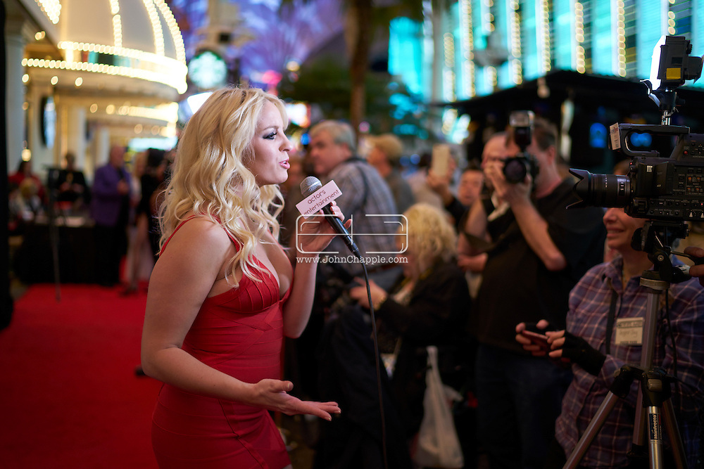 February 22, 2016. Las Vegas, Nevada.  The 22nd Reel Awards and Tribute Artist Convention in Las Vegas. Celebrity lookalikes from all over the world gathered at the Golden Nugget Hotel for the annual event. Pictured is  Britney Spears lookalike, Michaela Weeks from England.<br /> Copyright John Chapple / www.JohnChapple.com /