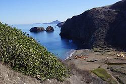 Channel Islands (Santa Cruz)