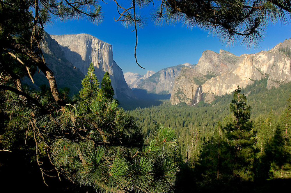 Yosemite Valley view, Yosemite National Park, California, United States of America