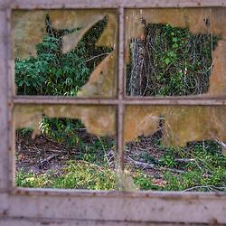 """""""Ruínas (paisagem) fotografado em Linhares, Espírito Santo -  Sudeste do Brasil. Bioma Mata Atlântica. Registro feito em 2015.<br /> <br /> <br /> <br /> ENGLISH: Ruins photographed in Linhares, Espírito Santo - Southeast of Brazil. Atlantic Forest Biome. Picture made in 2015."""""""