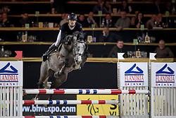 De Winter Jeroen, BEL, Leandro Vg<br /> Young Stallions 5 years of age<br /> Vlaanderens Kerstjumping Memorial Eric Wauters<br /> © Dirk Caremans<br /> 27/12/2016
