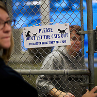 "A humorous sign hangs in an enclosure for cats up for adoption, at the Animal Rescue League of Berks County, during ""The Book Buddies Program"" in Birdsboro, PA on February 11, 2014.  Children in grades 1-8 read to the cats as a way to improve their reading skills and gain confidence.  The shelter animals can be a non-evaluative presence that can provide support and comfort to participants without judging them.  Students showed sustained focus and maintained a higher state of awareness, as well as improved attitudes toward school, according to researchers at Tufts University.  Photo taken February 11, 2014.  REUTERS/Mark Makela  (UNITED STATES)"