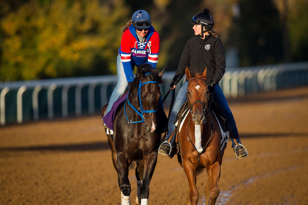 October 29, 2015:   Valid, trained by Marcus Vitali and owned by Crossed Sabres Farm, exercises in preparation for the Las Vegas Breeders' Cup Dirt Mile at Keeneland Race Track in Lexington, Kentucky. Alex Evers/ESW/CSM