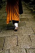 Monk walking on stone pathway.
