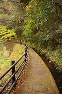 Yugashima Autumn Trail, Izu