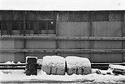 Vintertunnor på Reimersholme 1977