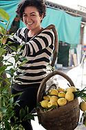 Vico Equense - contadina ritratta al mercato di Vico Equense. Nella cesta i tipici limoni della costiera.<br /> Ph. Roberto Salomone